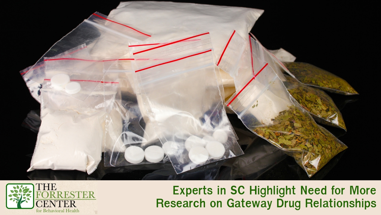 Experts in SC Highlight Need for More Research on Gateway Drug Relationships